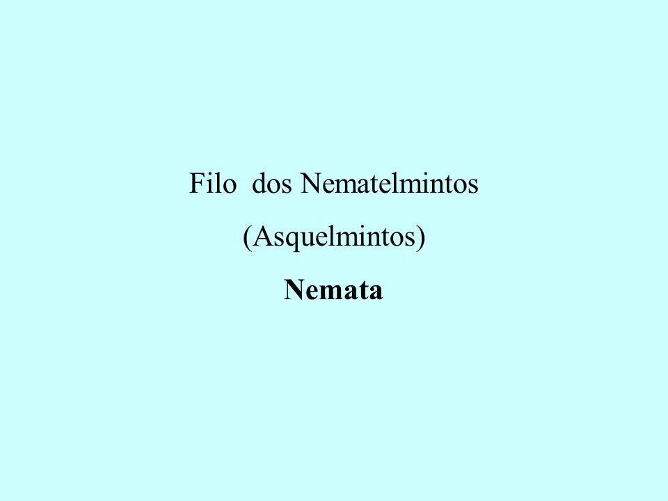 Filo dos Nematelmintos (Asquelmintos) Nemata