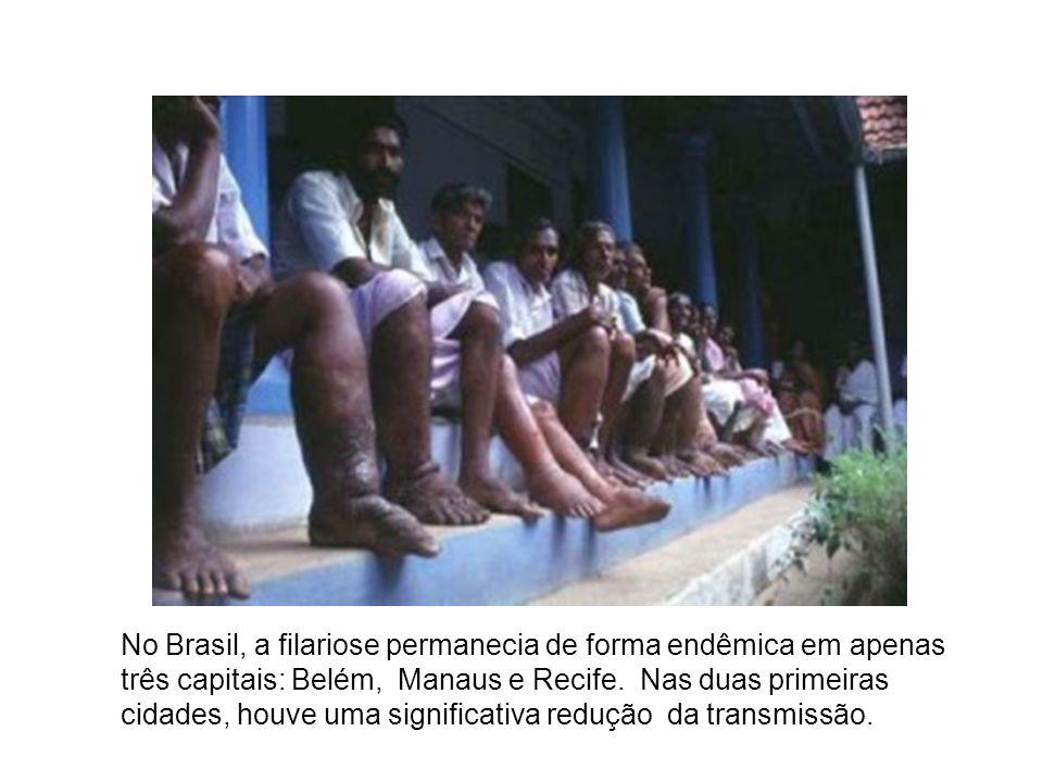 No Brasil, a filariose permanecia de forma endêmica em apenas três capitais: Belém, Manaus e Recife.