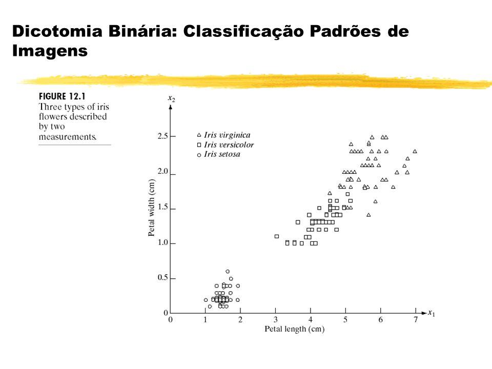 Dicotomia Binária: Classificação Padrões de Imagens