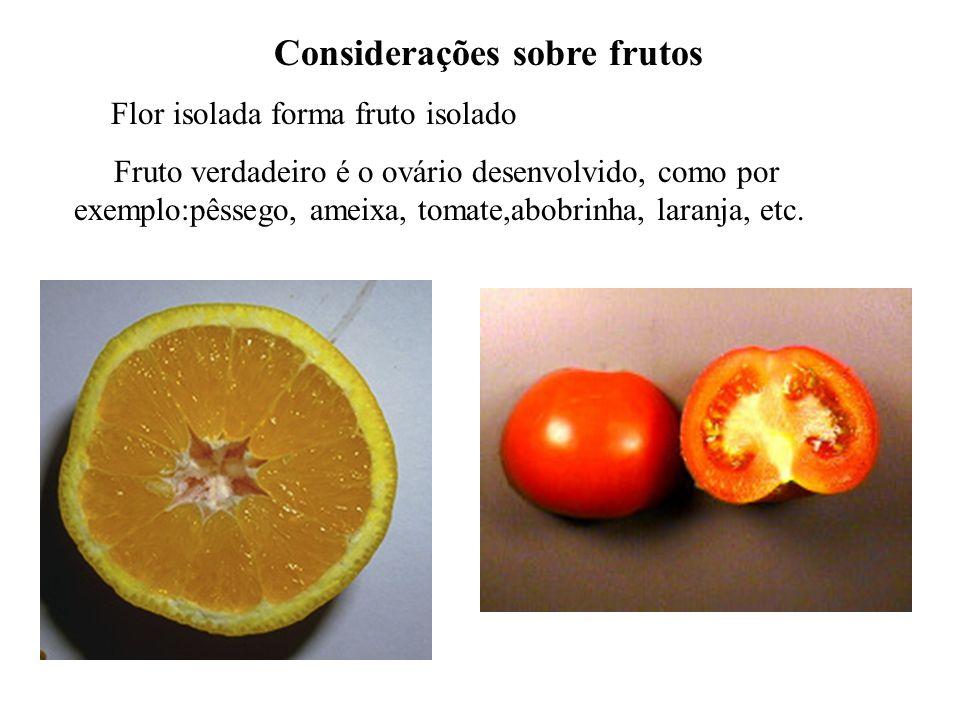 adalberto Considerações sobre frutos Flor isolada forma fruto isolado Fruto verdadeiro é o ovário desenvolvido, como por exemplo:pêssego, ameixa, toma