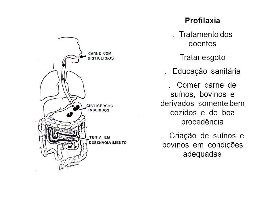 Profilaxia. Tratamento dos doentes Tratar esgoto. Educação sanitária. Comer carne de suínos, bovinos e derivados somente bem cozidos e de boa procedên