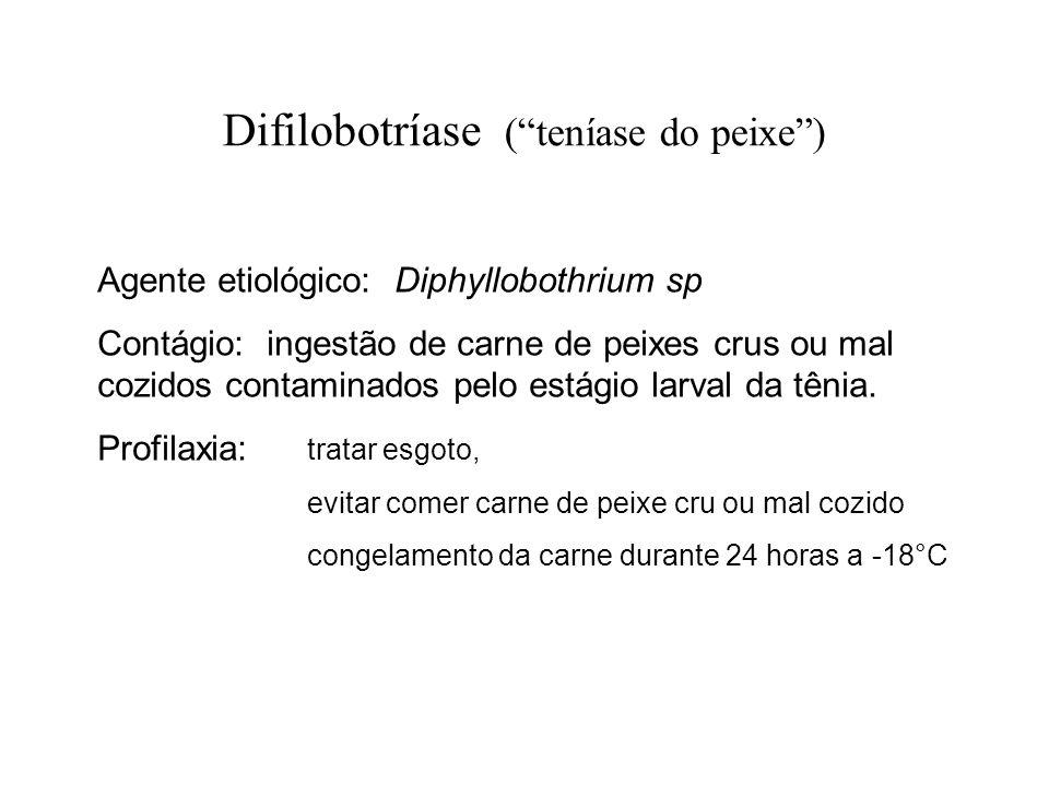 Difilobotríase (teníase do peixe) Agente etiológico: Diphyllobothrium sp Contágio: ingestão de carne de peixes crus ou mal cozidos contaminados pelo e