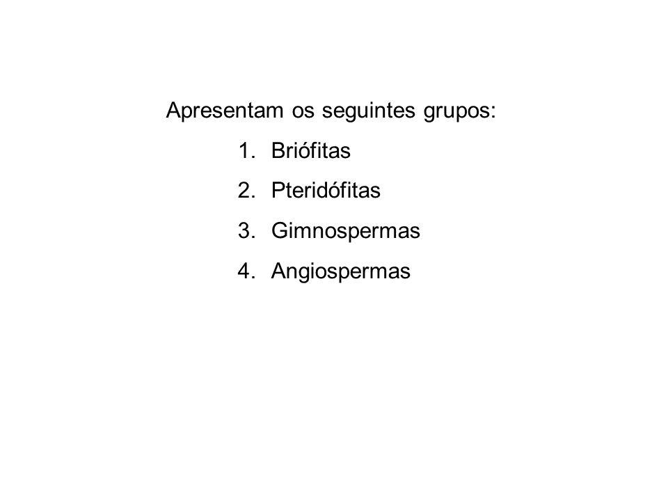 Classificação avasculares Briófitas vasculares sem sementes Pteridófitas Traqueófitas sem flores Gimnospermas com sementes Espermatófitas com flores Angiospermas Fanerógamas