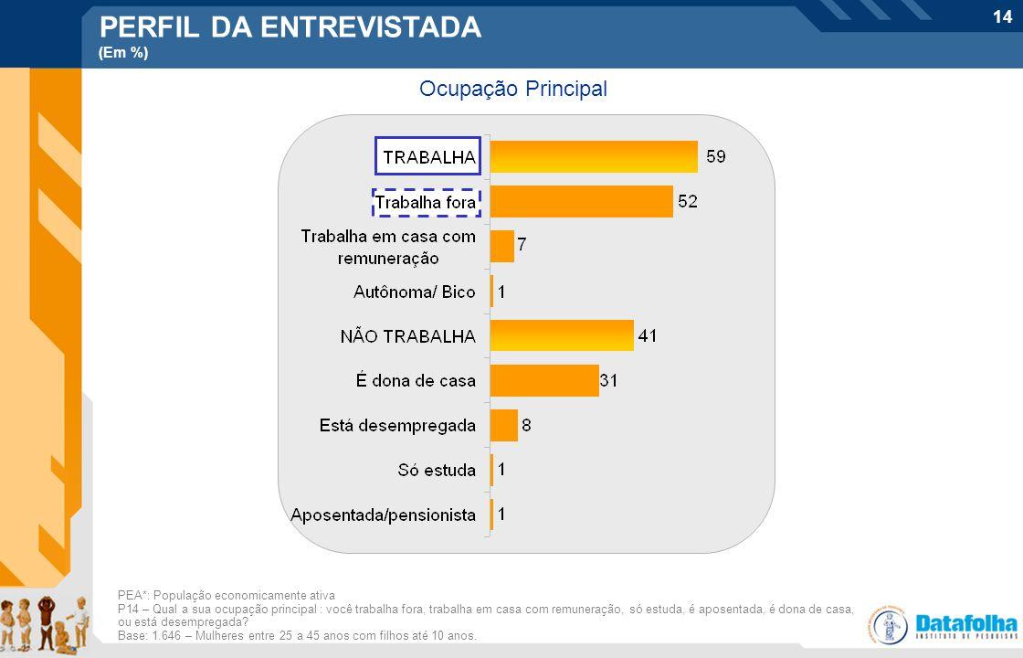 14 Ocupação Principal PEA*: População economicamente ativa P14 – Qual a sua ocupação principal : você trabalha fora, trabalha em casa com remuneração,