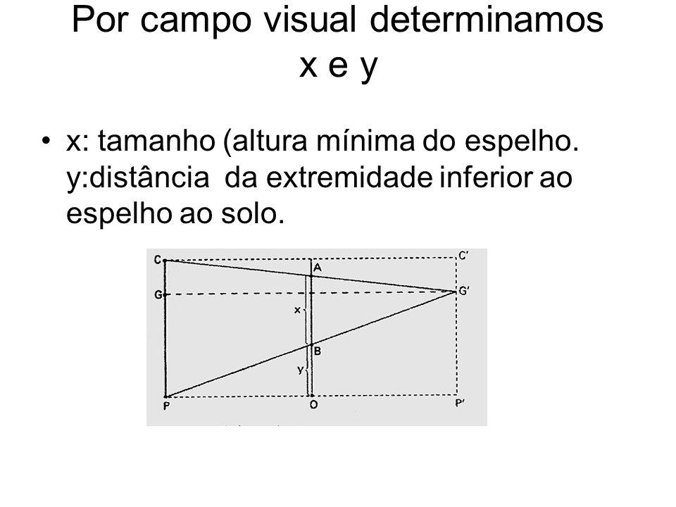 Por campo visual determinamos x e y x: tamanho (altura mínima do espelho. y:distância da extremidade inferior ao espelho ao solo.