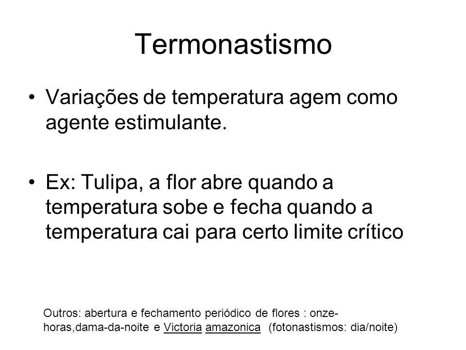 Termonastismo Variações de temperatura agem como agente estimulante. Ex: Tulipa, a flor abre quando a temperatura sobe e fecha quando a temperatura ca
