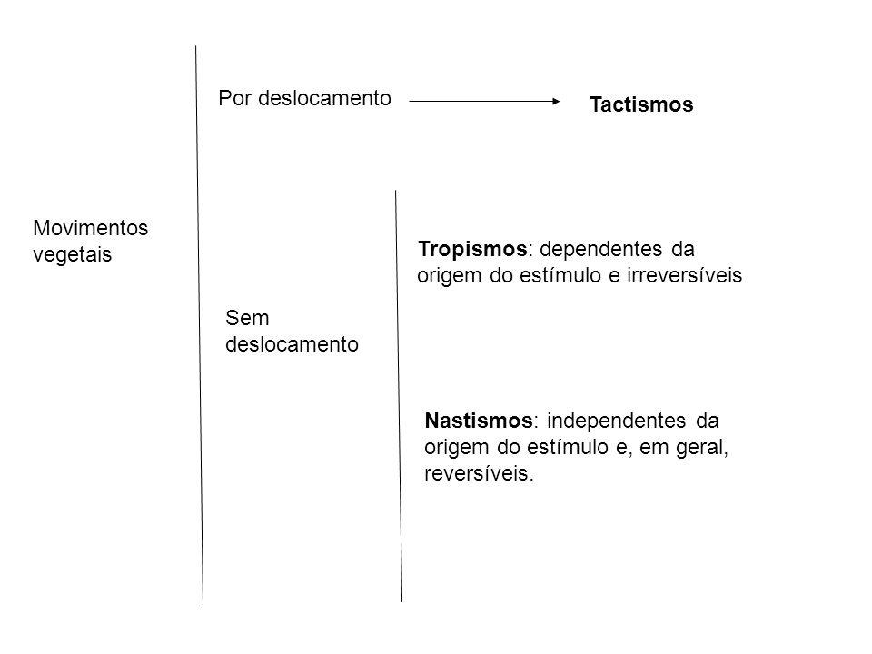 Por deslocamento Tactismos Sem deslocamento Tropismos: dependentes da origem do estímulo e irreversíveis Nastismos: independentes da origem do estímul