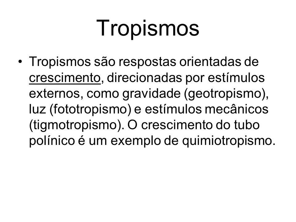 Tropismos Tropismos são respostas orientadas de crescimento, direcionadas por estímulos externos, como gravidade (geotropismo), luz (fototropismo) e e
