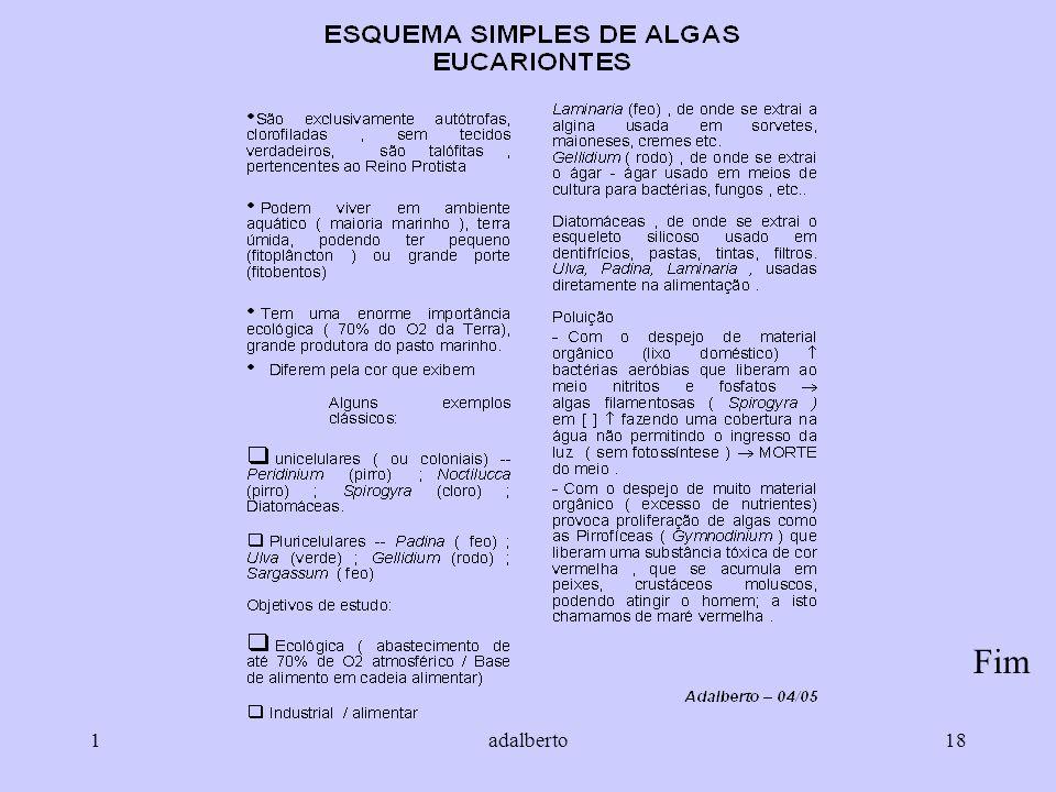 1adalberto18 Fim