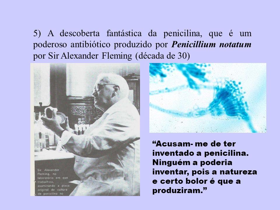 5) A descoberta fantástica da penicilina, que é um poderoso antibiótico produzido por Penicillium notatum por Sir Alexander Fleming (década de 30) Acu
