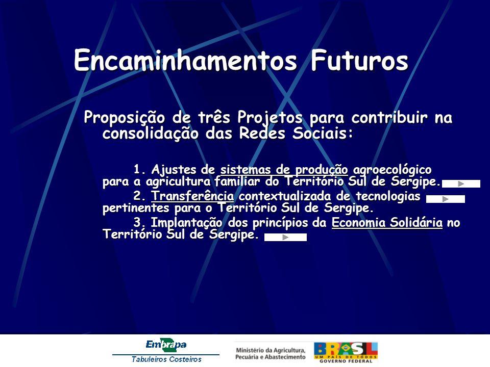 Encaminhamentos Futuros Proposição de três Projetos para contribuir na consolidação das Redes Sociais: 1. Ajustes de sistemas de produção agroecológic