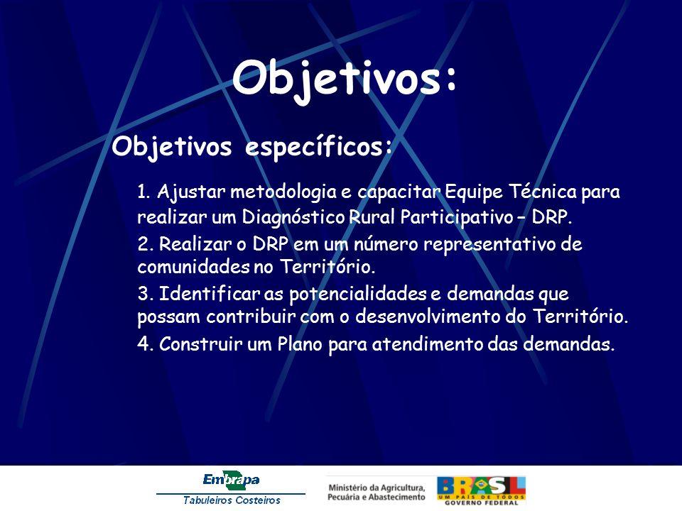 Objetivos: Objetivos específicos: 1. Ajustar metodologia e capacitar Equipe Técnica para realizar um Diagnóstico Rural Participativo – DRP. 2. Realiza