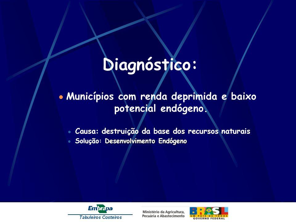 Diagnóstico: Municípios com renda deprimida e baixo potencial endógeno. Causa: destruição da base dos recursos naturais Desenvolvimento Endógeno Soluç
