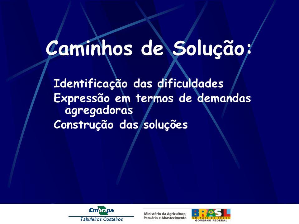 Caminhos de Solução: Identificação das dificuldades Expressão em termos de demandas agregadoras Construção das soluções