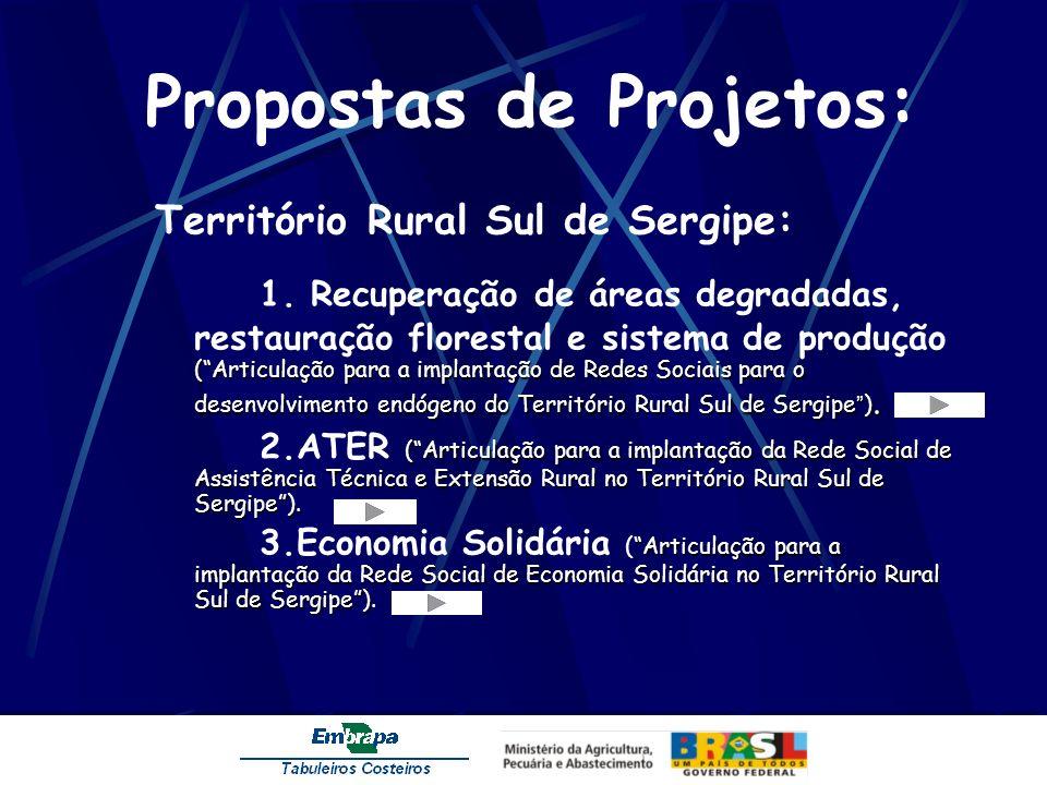 Propostas de Projetos: Território Rural Sul de Sergipe: (Articulação para a implantação de Redes Sociais para o desenvolvimento endógeno do Território Rural Sul de Sergipe ).