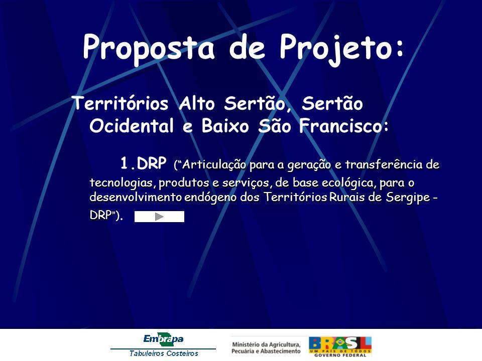 Proposta de Projeto: Territórios Alto Sertão, Sertão Ocidental e Baixo São Francisco: Articulação para a geração e transferência de tecnologias, produ
