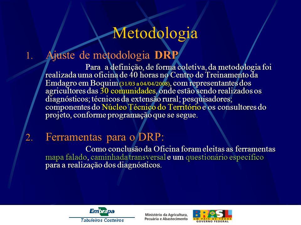 Metodologia DRP 1. Ajuste de metodologia DRP ara a definição, de forma coletiva, da metodologia foi realizada uma oficina de 40 horas no Centro de Tre