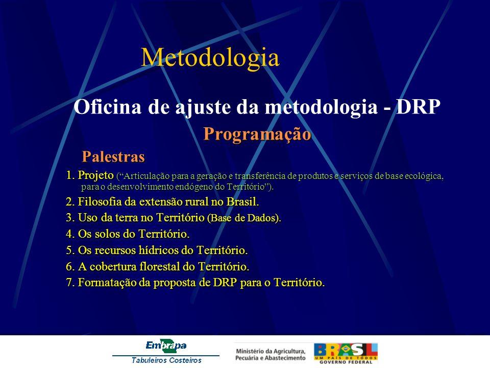Metodologia Oficina de ajuste da metodologia - DRPProgramaçãoPalestras 1. Projeto (Articulação para a geração e transferência de produtos e serviços d