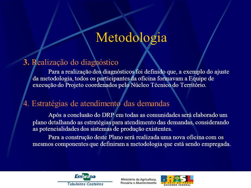 Metodologia 3. 3. Realização do diagnóstico Para a realização dos diagnósticos foi definido que, a exemplo do ajuste da metodologia, todos os particip