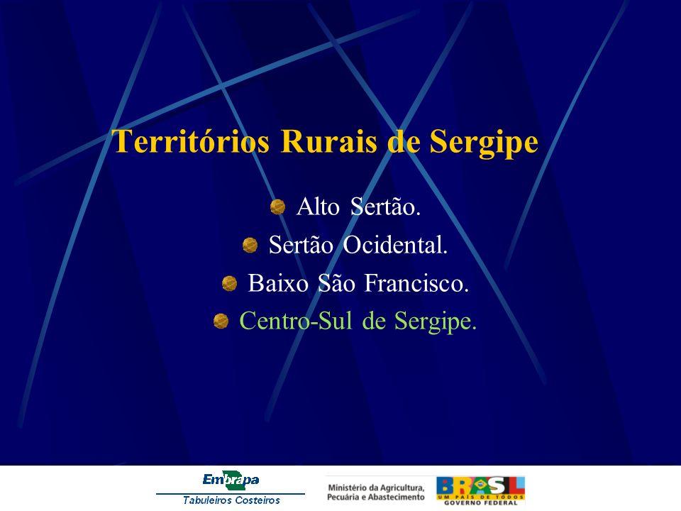 Territórios Rurais de Sergipe Alto Sertão. Sertão Ocidental. Baixo São Francisco. Centro-Sul de Sergipe.