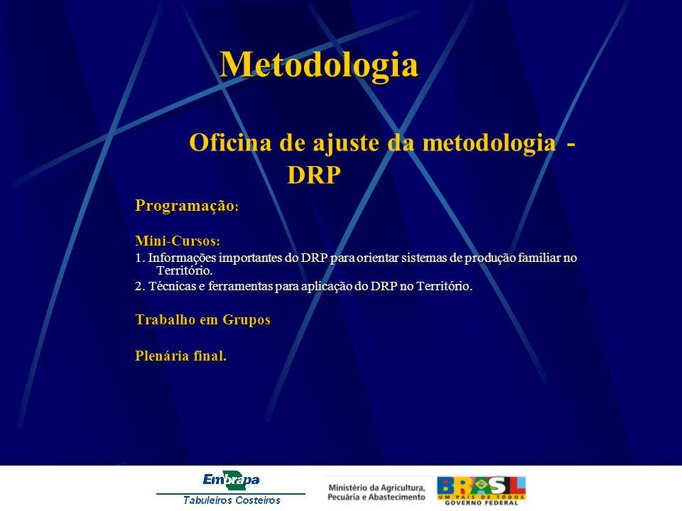 Metodologia Metodologia Oficina de ajuste da metodologia - DRP Programação : Mini-Cursos : 1. Informações importantes do DRP para orientar sistemas de
