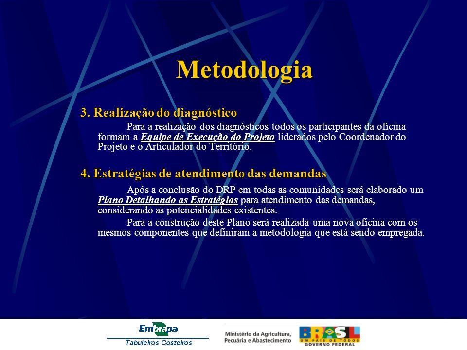 Metodologia 3. Realização do diagnóstico Equipe de Execução do Projeto Para a realização dos diagnósticos todos os participantes da oficina formam a E