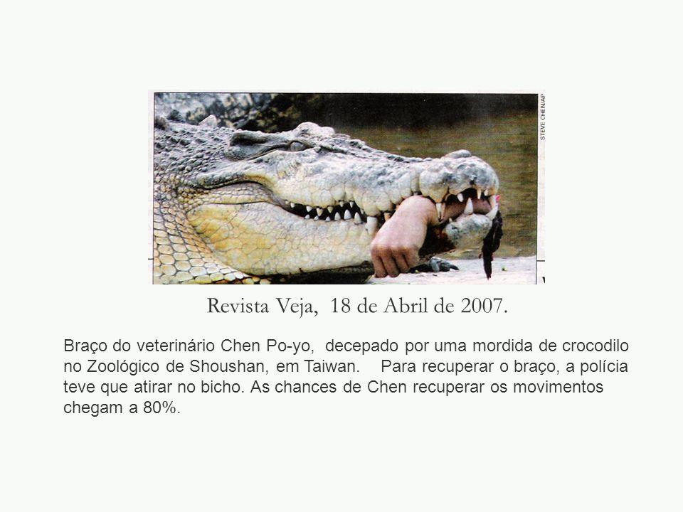 Revista Veja, 18 de Abril de 2007. Braço do veterinário Chen Po-yo, decepado por uma mordida de crocodilo no Zoológico de Shoushan, em Taiwan. Para re
