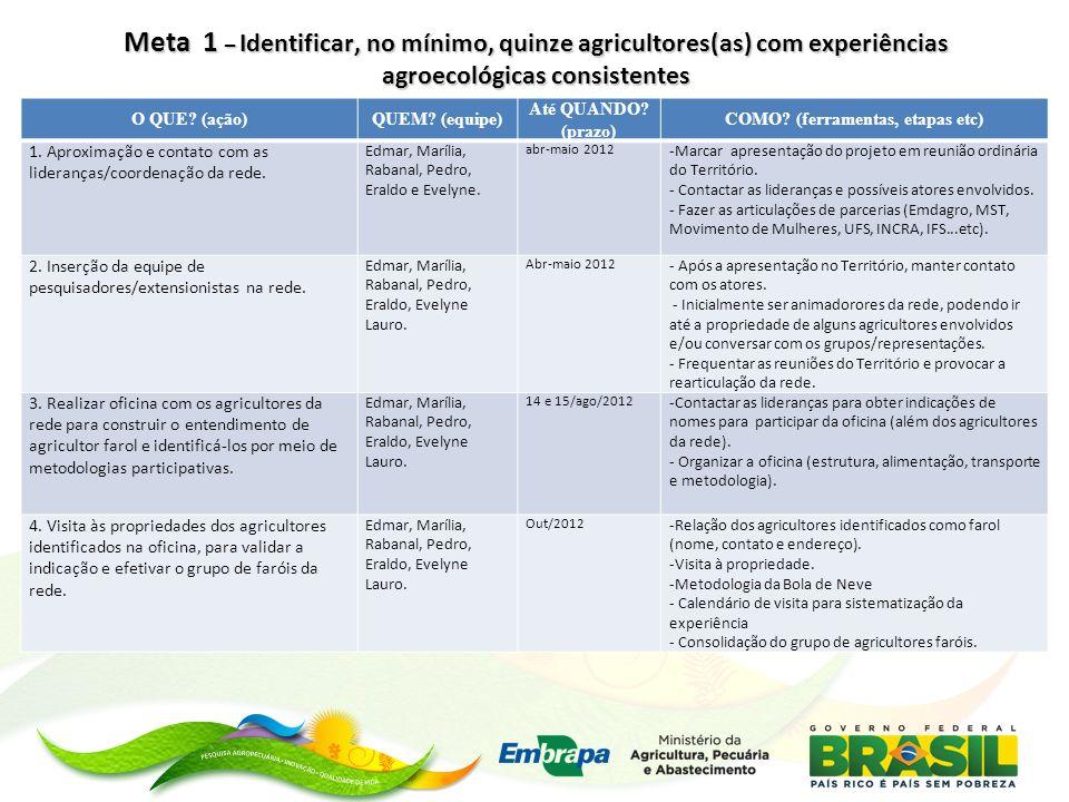 Meta 2 – Ajustar, em conjunto com os(as) agricultores(as), modelos de sistematização de experiências.