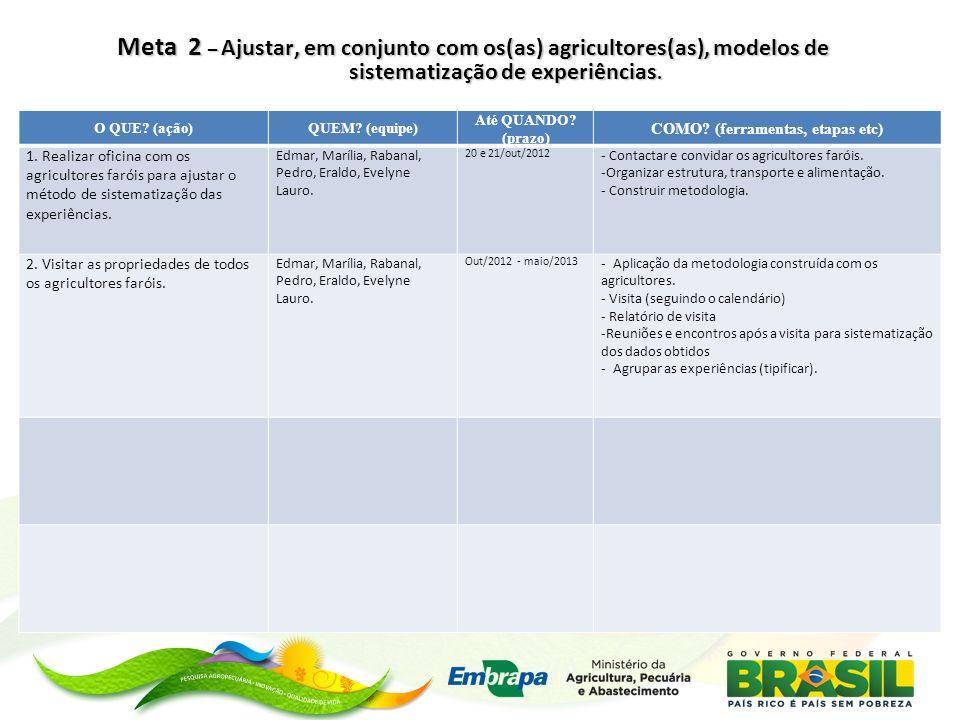 Meta 3 – Sistematizar experiências individuais dos(as) agricultores(as) faróis.