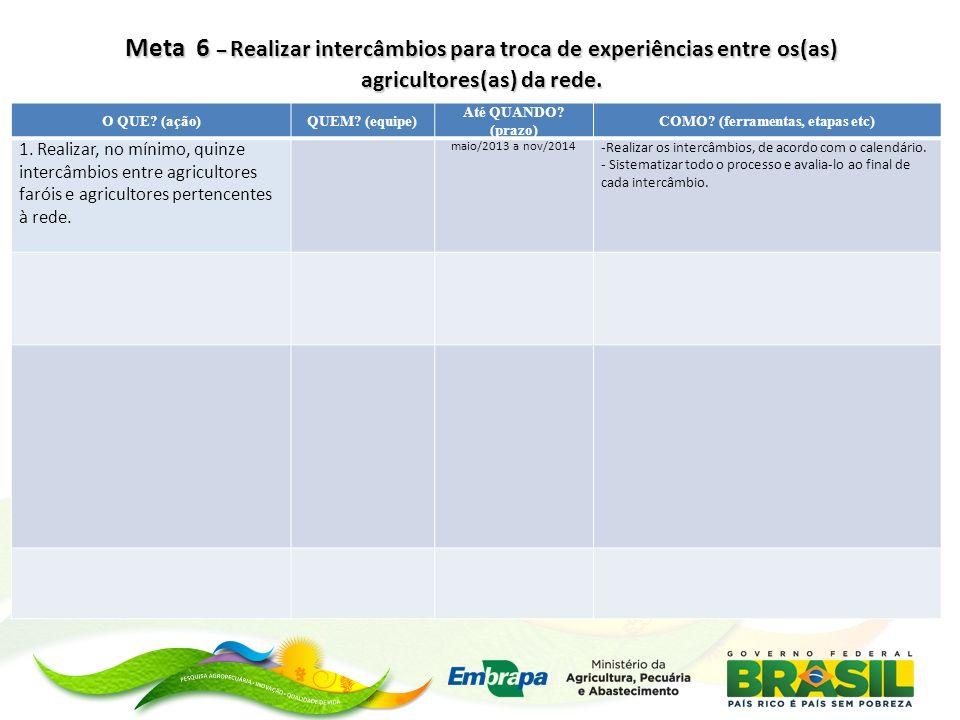 Meta 7 – Meta 7 – Integrar quinze novos(as) agricultores(as) que tenham adotado práticas agroecológicas após intercâmbios.