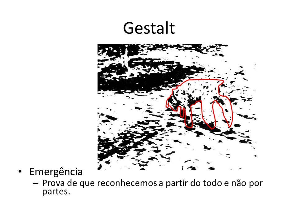 Gestalt Construtivismo – Conseguimos identificar características não presentes a partir da percepção de características presentes.