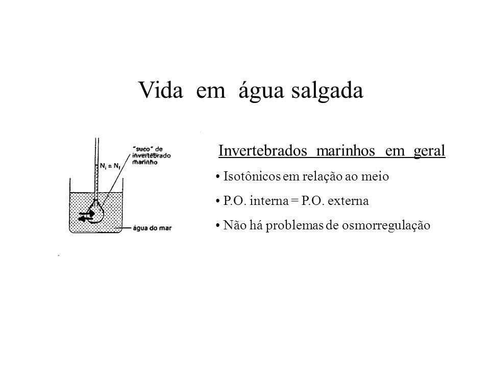 Invertebrados marinhos em geral Isotônicos em relação ao meio P.O. interna = P.O. externa Não há problemas de osmorregulação Vida em água salgada