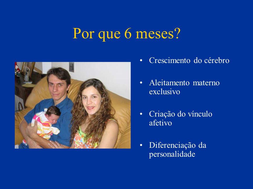 Por que 6 meses? Crescimento do cérebro Aleitamento materno exclusivo Criação do vínculo afetivo Diferenciação da personalidade