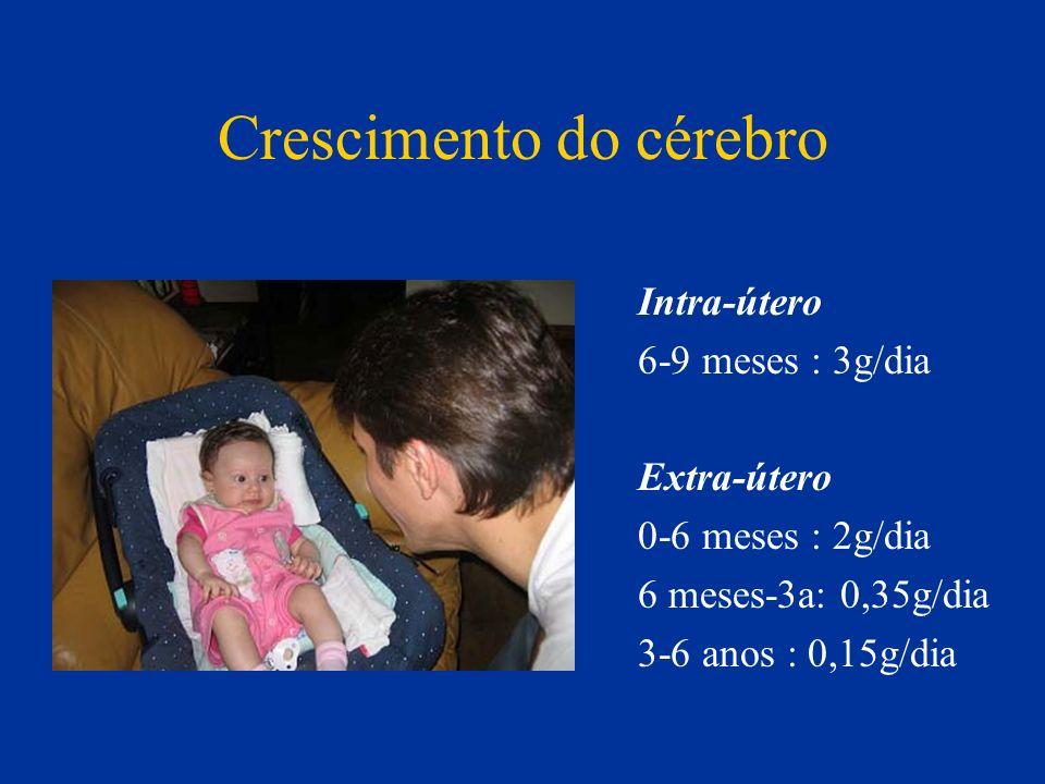 Crescimento do cérebro Intra-útero 6-9 meses : 3g/dia Extra-útero 0-6 meses : 2g/dia 6 meses-3a: 0,35g/dia 3-6 anos : 0,15g/dia