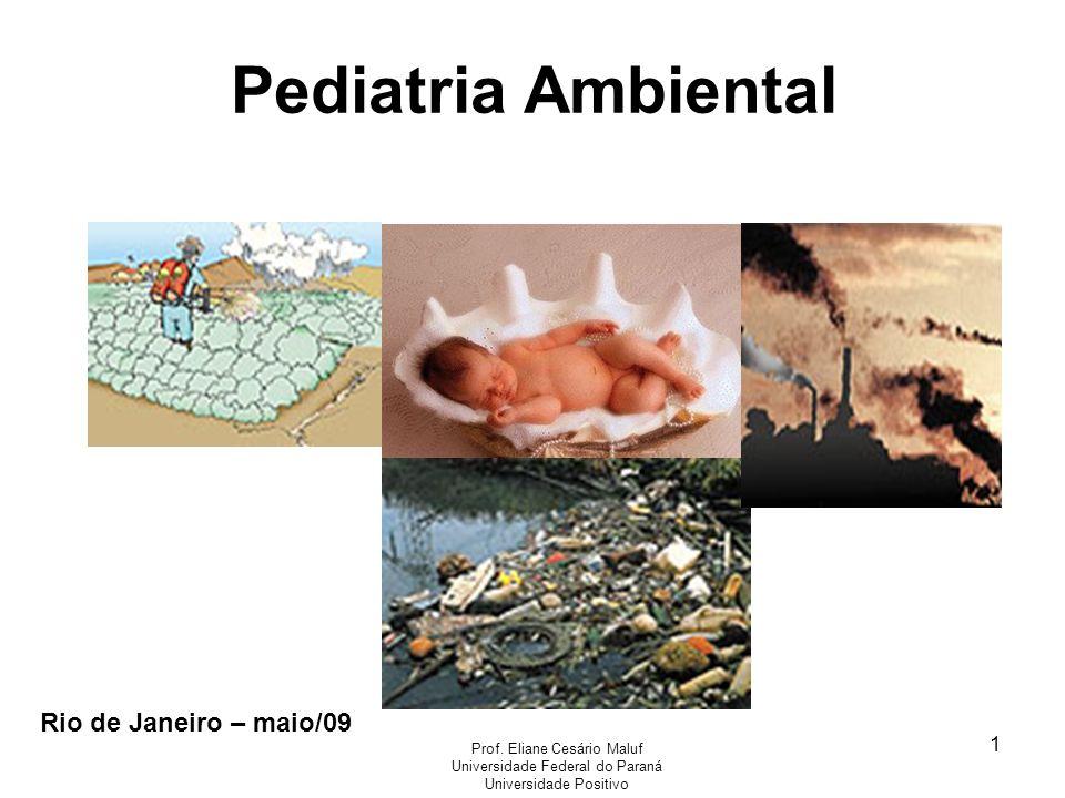 1 Rio de Janeiro – maio/09 Prof. Eliane Cesário Maluf Universidade Federal do Paraná Universidade Positivo Pediatria Ambiental