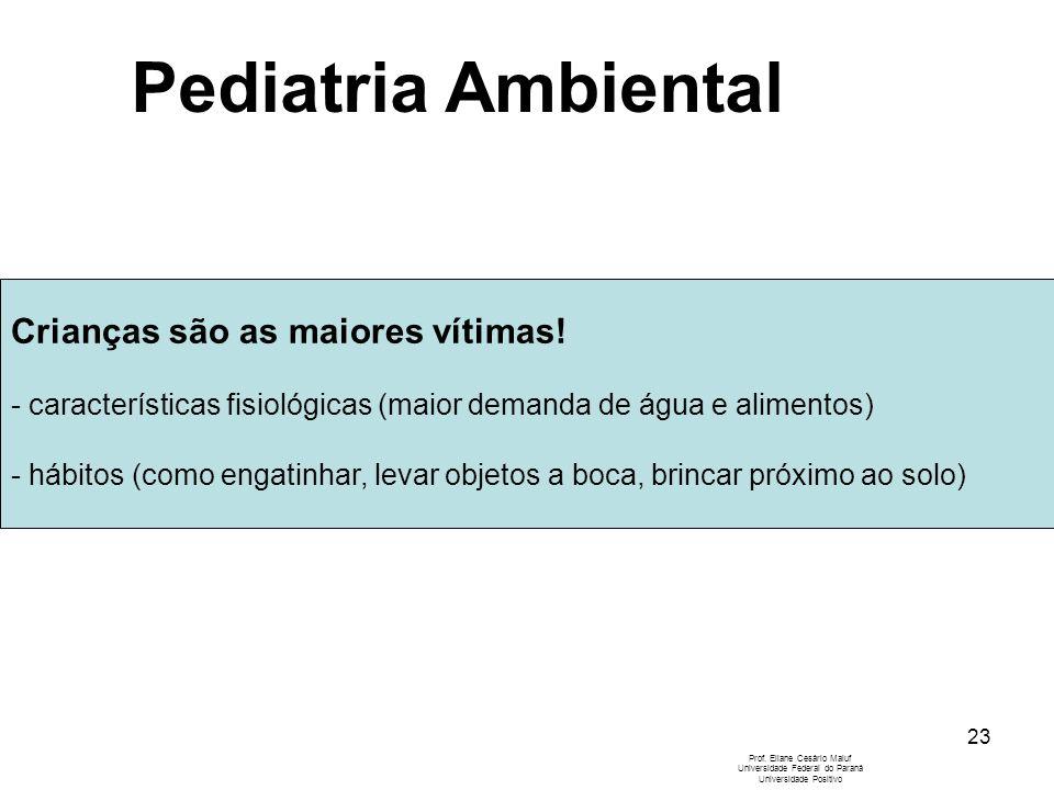 23 Crianças são as maiores vítimas! - características fisiológicas (maior demanda de água e alimentos) - hábitos (como engatinhar, levar objetos a boc