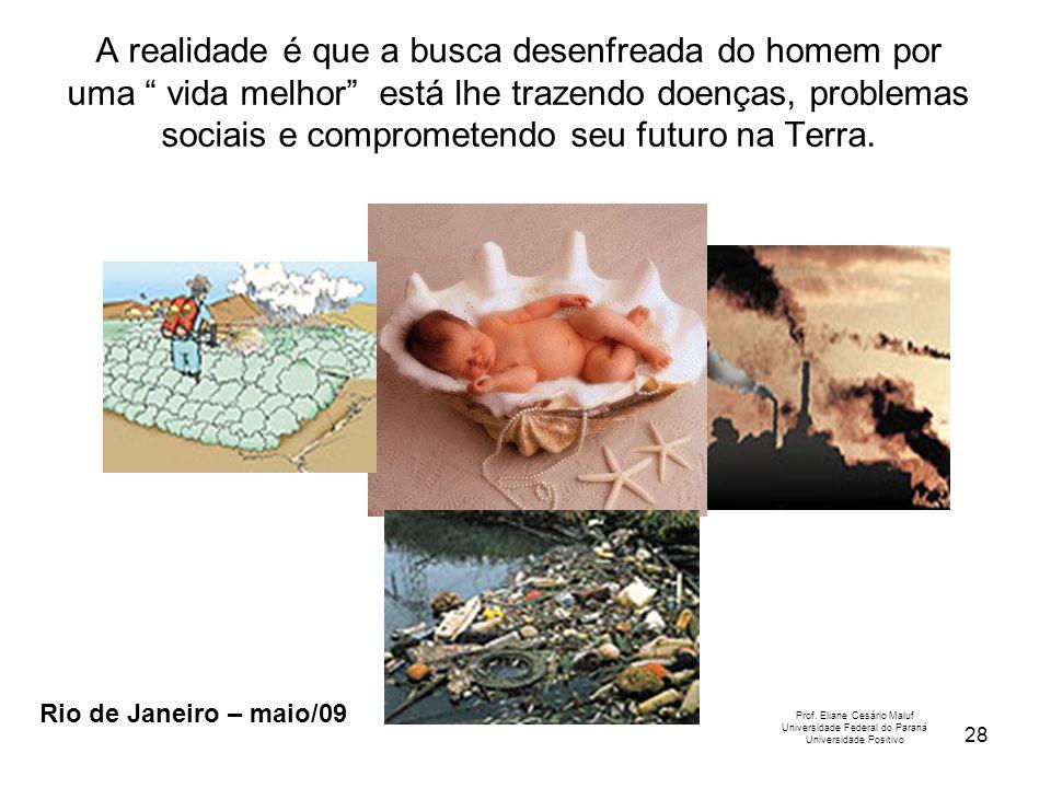 28 Prof. Eliane Cesário Maluf Universidade Federal do Paraná Universidade Positivo Rio de Janeiro – maio/09 A realidade é que a busca desenfreada do h