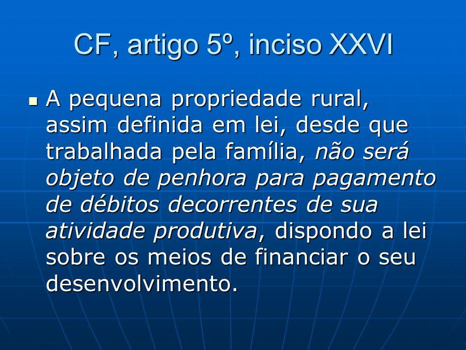CF, artigo 5º, inciso XXVI A pequena propriedade rural, assim definida em lei, desde que trabalhada pela família, não será objeto de penhora para paga