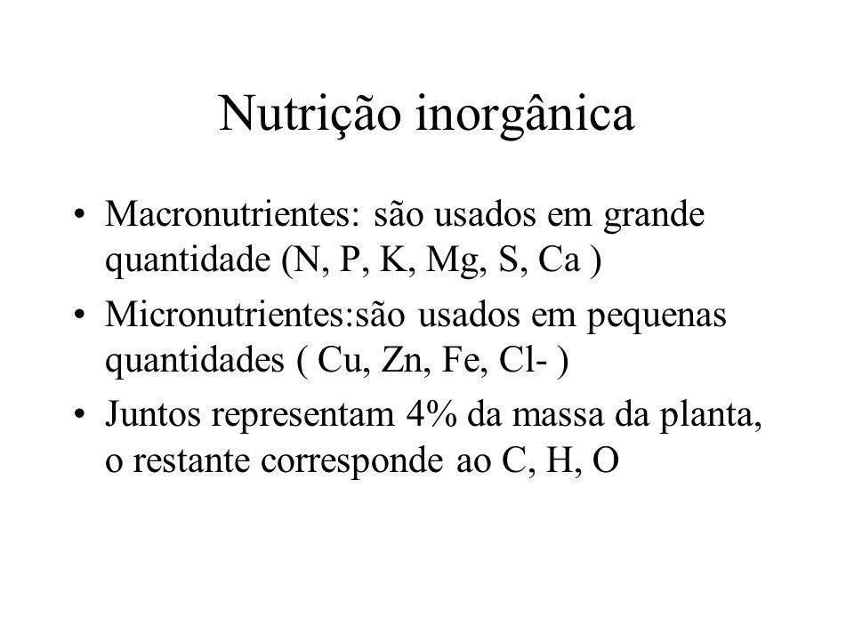 Nutrição inorgânica Macronutrientes: são usados em grande quantidade (N, P, K, Mg, S, Ca ) Micronutrientes:são usados em pequenas quantidades ( Cu, Zn