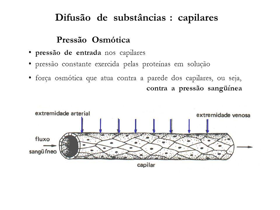 Difusão de substâncias : capilares Pressão Osmótica pressão de entrada nos capilares pressão constante exercida pelas proteínas em solução força osmót