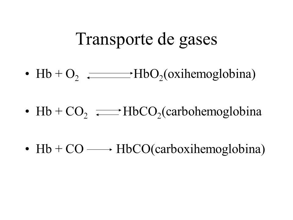 Transporte de gases Hb + O 2 HbO 2 (oxihemoglobina) Hb + CO 2 HbCO 2 (carbohemoglobina Hb + CO HbCO(carboxihemoglobina)