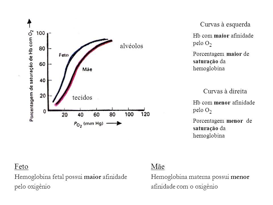 Feto Mãe Hemoglobina fetal possui maior afinidadeHemoglobina materna possui menor pelo oxigênioafinidade com o oxigênio Curvas à esquerda Hb com maior
