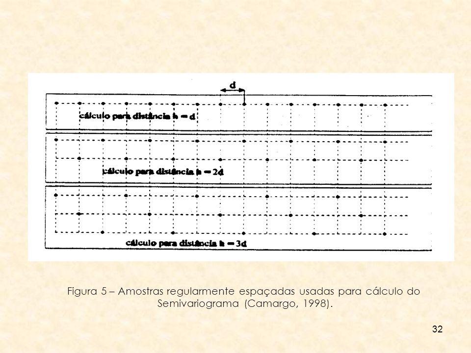 32 Figura 5 – Amostras regularmente espaçadas usadas para cálculo do Semivariograma (Camargo, 1998).