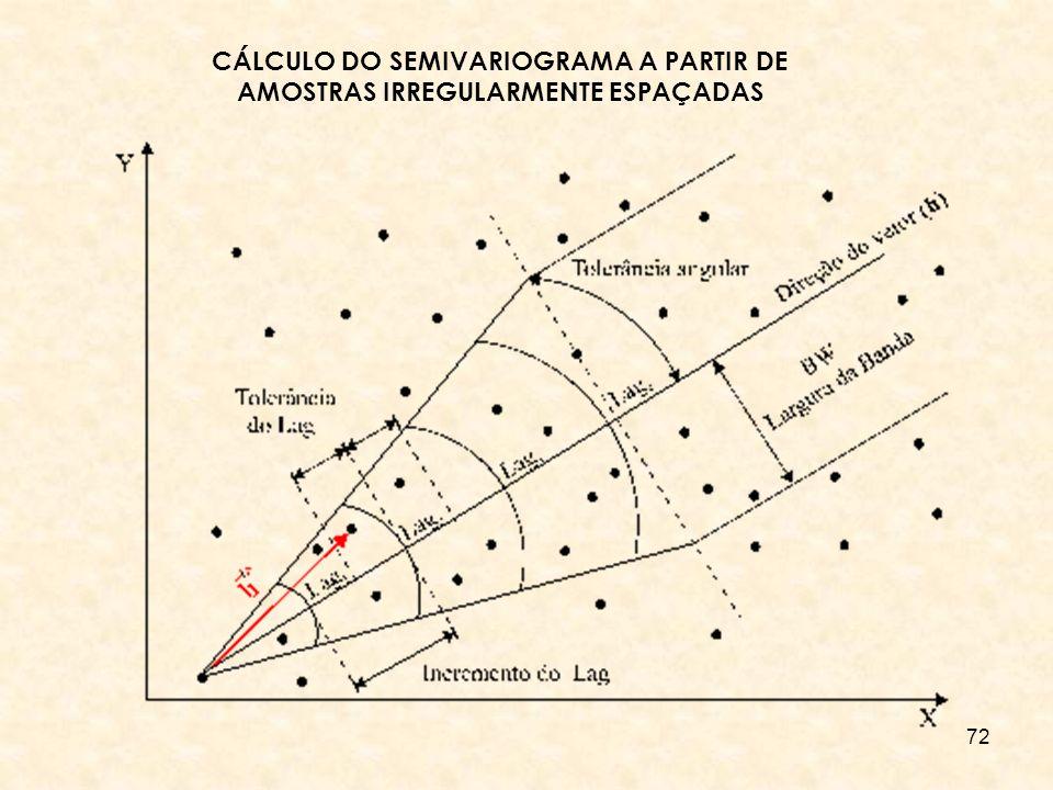 72 CÁLCULO DO SEMIVARIOGRAMA A PARTIR DE AMOSTRAS IRREGULARMENTE ESPAÇADAS