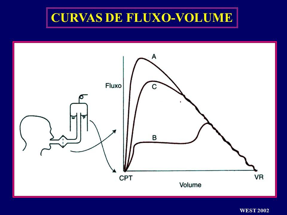 CURVAS DE FLUXO-VOLUME WEST 2002