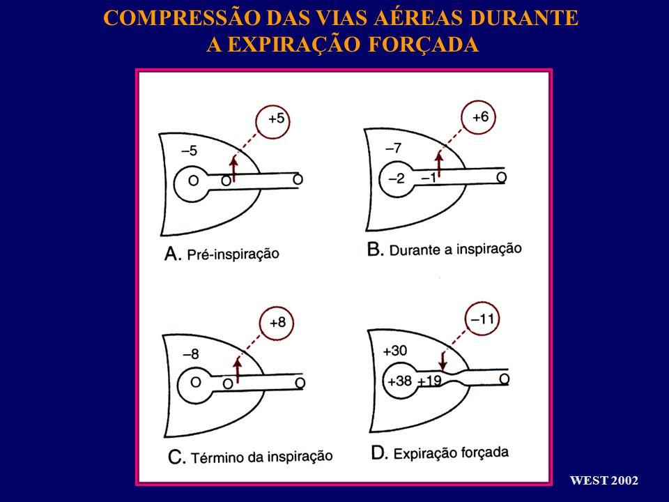 COMPRESSÃO DAS VIAS AÉREAS DURANTE A EXPIRAÇÃO FORÇADA WEST 2002