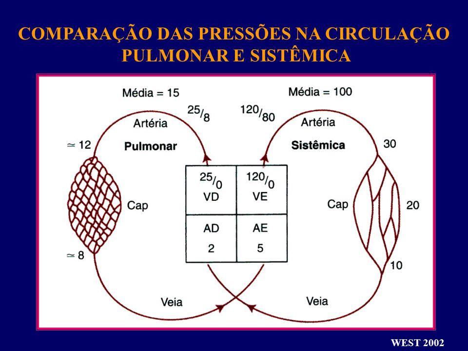 COMPARAÇÃO DAS PRESSÕES NA CIRCULAÇÃO PULMONAR E SISTÊMICA