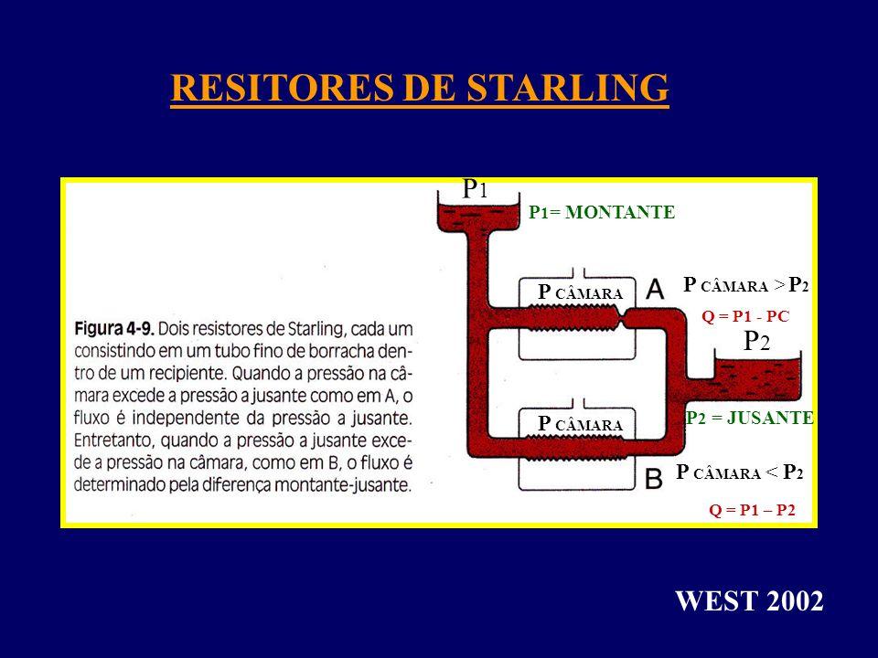 RESITORES DE STARLING WEST 2002 P 1 = MONTANTE P 2 = JUSANTE P1P1 P2P2 P CÂMARA P CÂMARA > P 2 P CÂMARA < P 2 Q = P1 - PC Q = P1 – P2