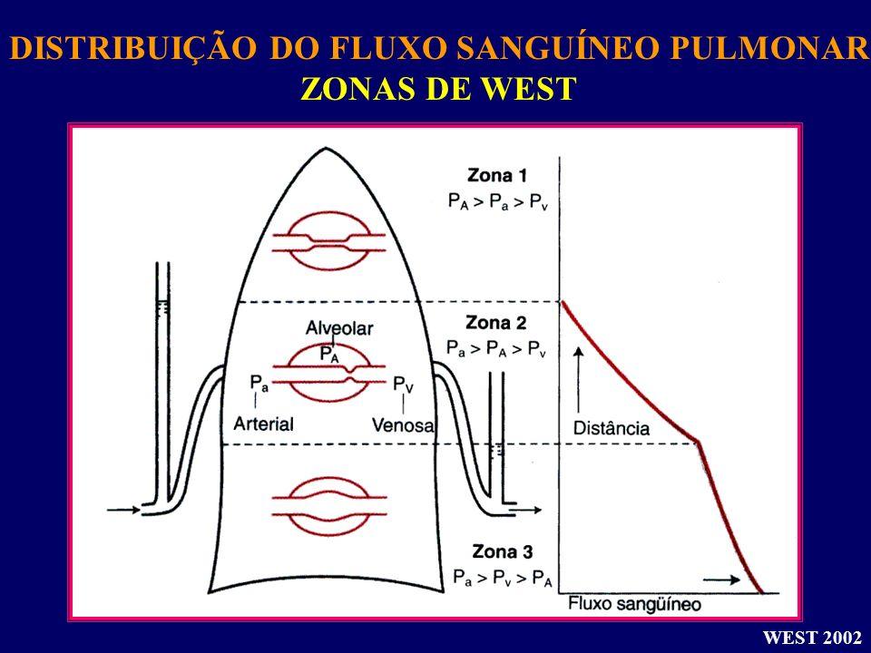 DISTRIBUIÇÃO DO FLUXO SANGUÍNEO PULMONAR ZONAS DE WEST WEST 2002