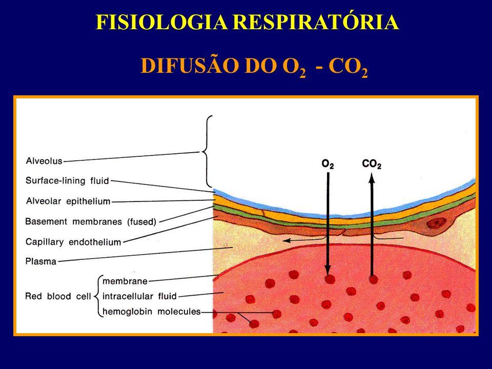FISIOLOGIA RESPIRATÓRIA DIFUSÃO DO O 2 - CO 2